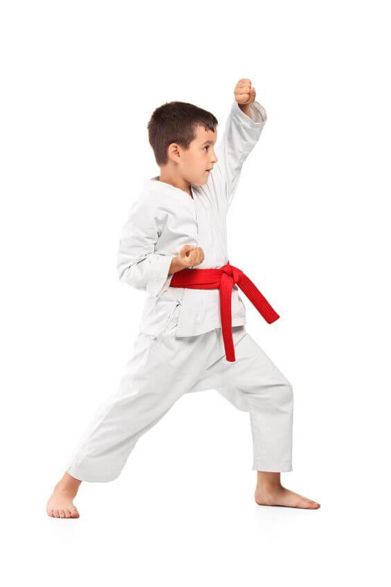Waterloo Martial Arts | D'Souza Martial Arts Academy ...